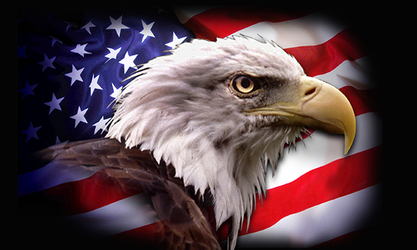 Pictures american flag eagle backgrounds background wallpaper zimbio 600x360