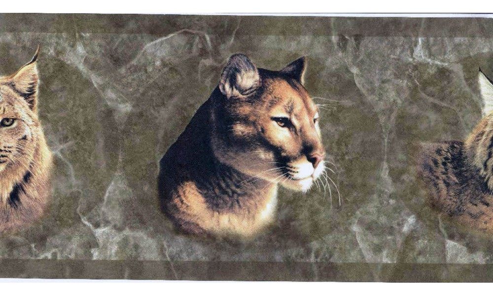 Home Brown Wild Cats Wallpaper Border 1000x600