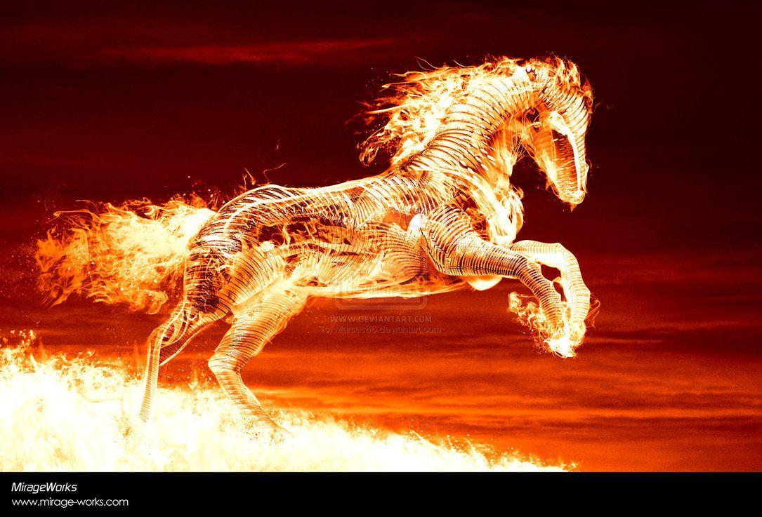 Cool Fire Horse cool fire horse wallpaper widescreen desktop 1085x737