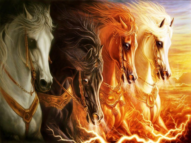 Free Download Download Horse 3d Wallpaper Designs New Xp Horse 3d