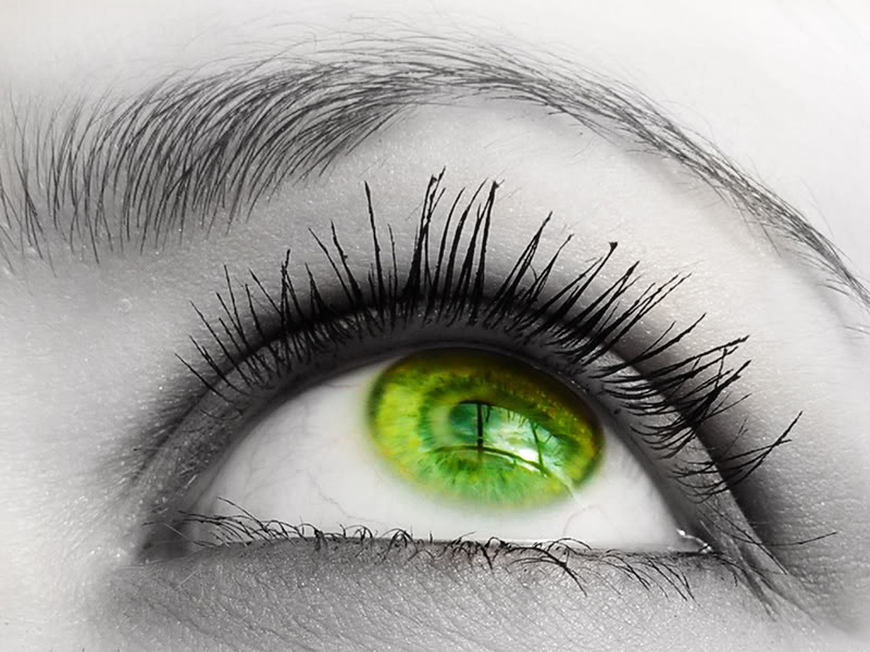 Green Eye Wallpaper Green Eye Desktop Background 800x600