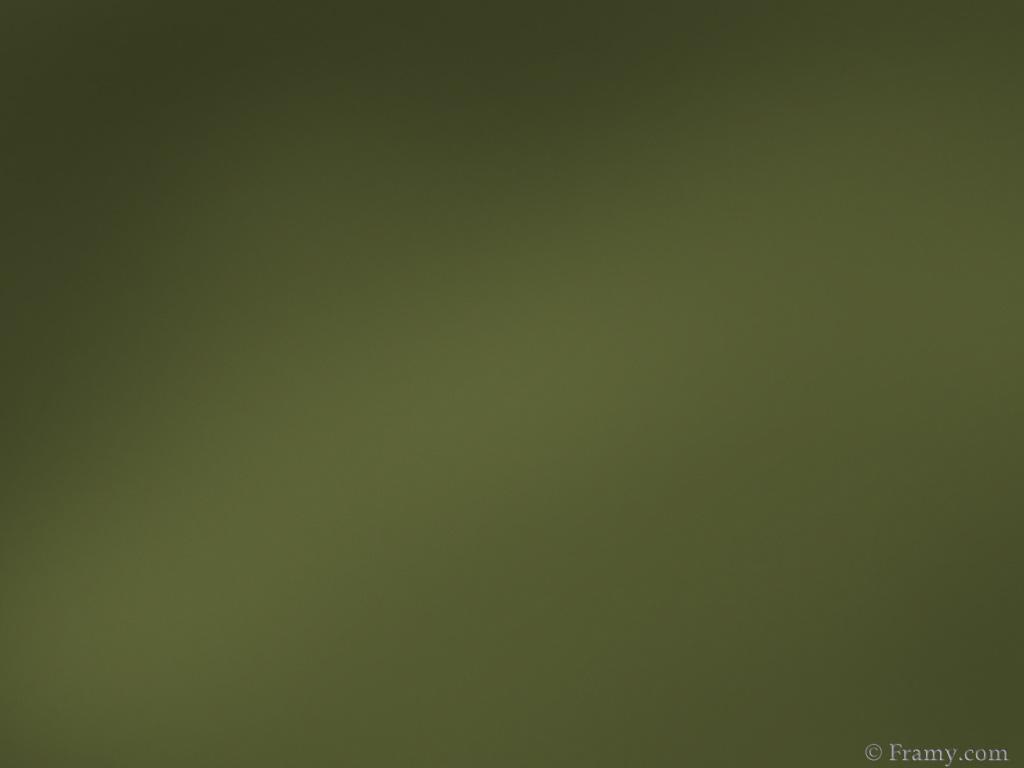 Olive Green Wallpaper 1024x768