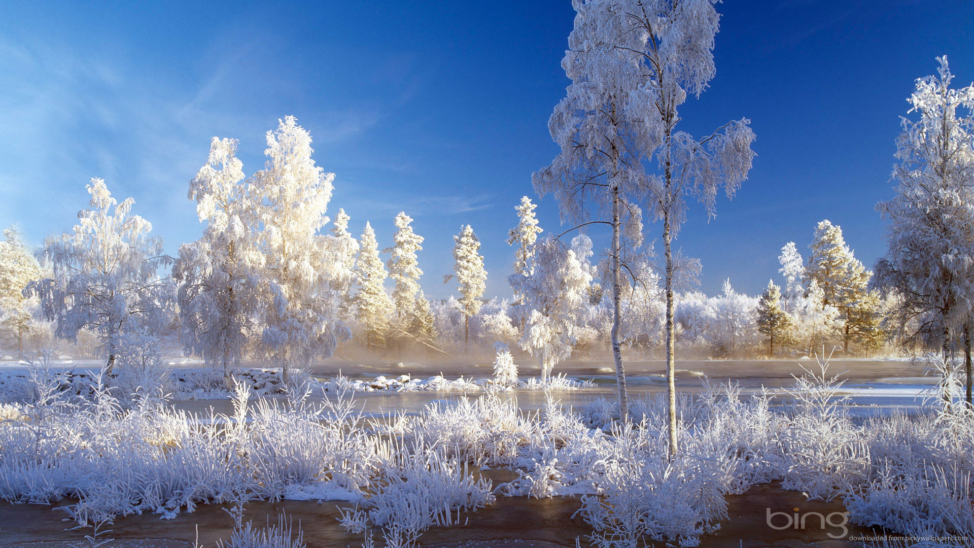 Bing Winter Landscape Picture For iPhone Blackberry iPad Bing 1920x1080