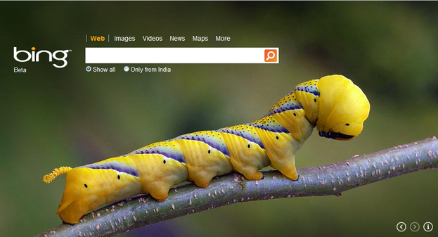 Bing Wallpaper Changes Daily Automatically