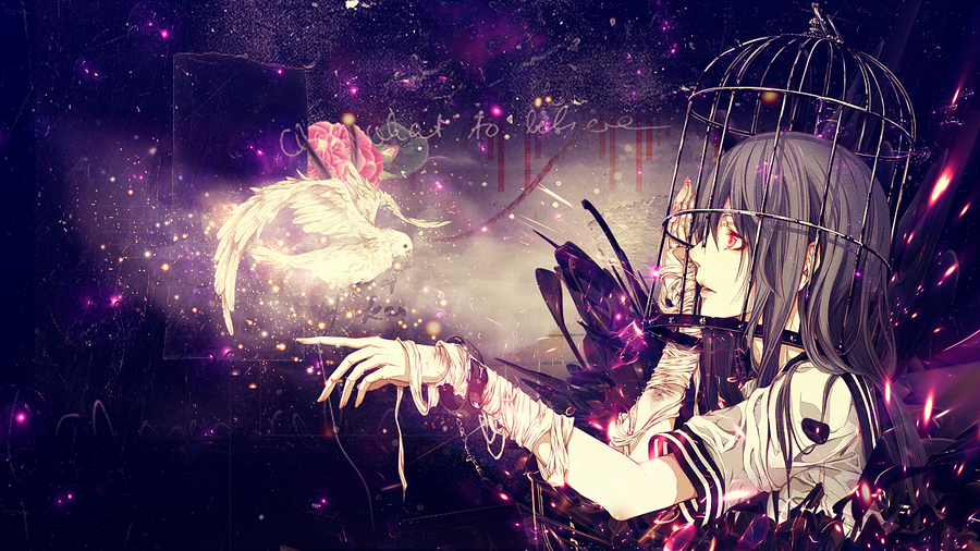 Anime Girl   Girl and the white Pidgeon Wallpaper by GinXen on 900x506