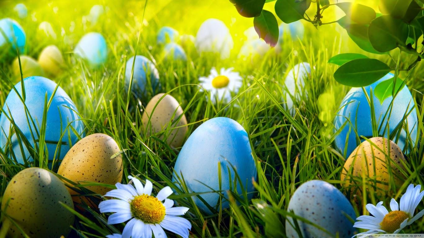Easter Egg Hunt 1366x768