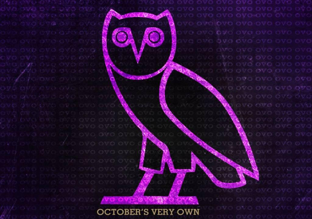 Drake Owl IPhone Wallpaper