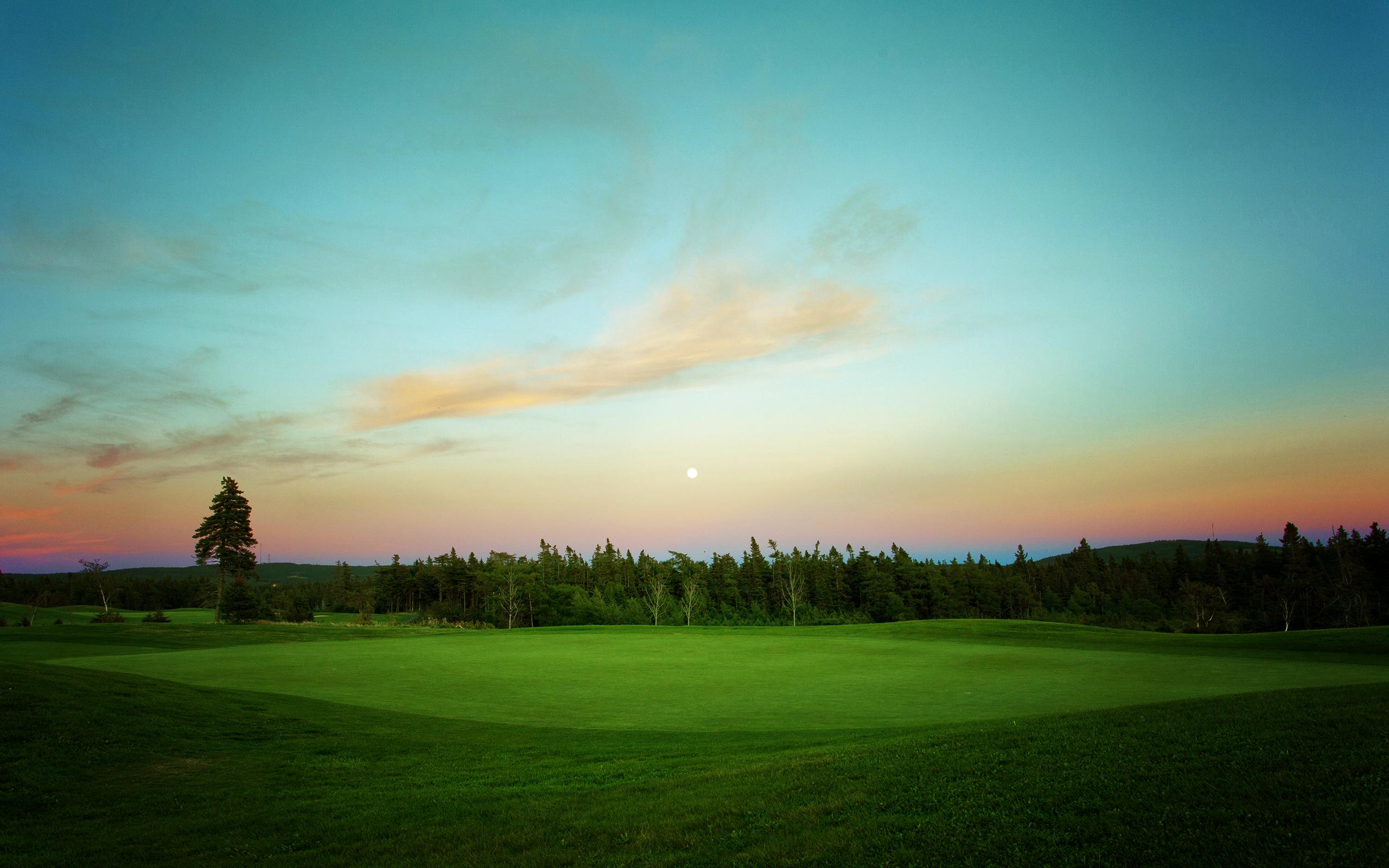 Golf Course 2560x1600