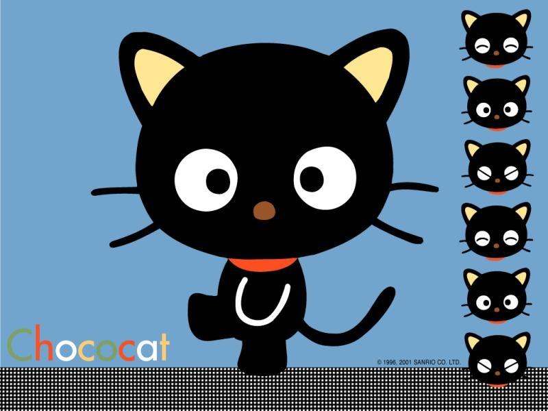 Free Download Cartoon Cat Wallpapers And Cartoon Cat Backgrounds 1 Of 1 Wallpaper 800x600 For Your Desktop Mobile Tablet Explore 75 Cartoon Cat Wallpaper Cute Cartoon Cat Wallpaper Cartoon