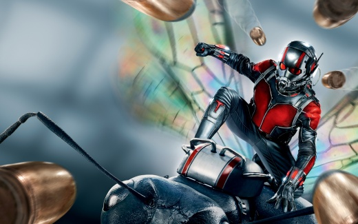 Ant Man 2015 HD Wallpaper   iHD Wallpapers 520x325