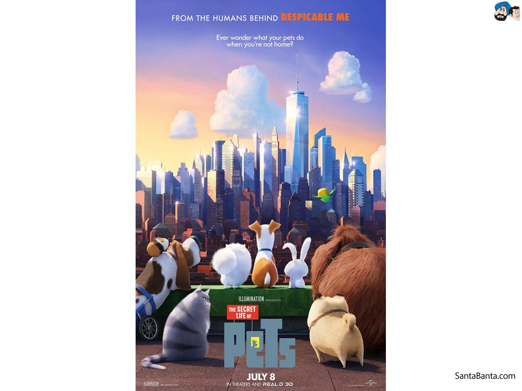 The Secret Life of Pets Movie Wallpaper 2 1024x768