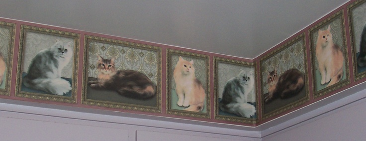 cat wallpaper border Cat Decor Pinterest 736x283