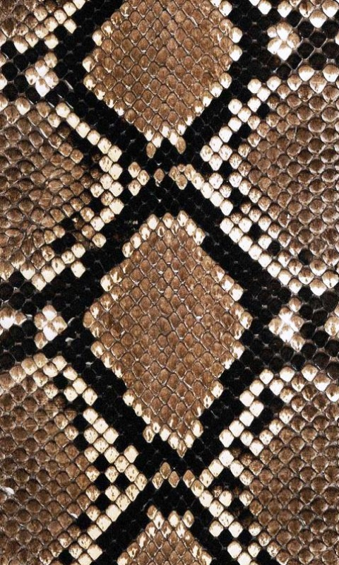 snake skin wallpaper 480x800