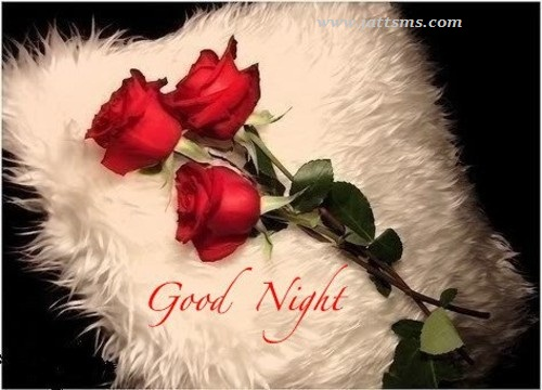Free Download Good Night Love Hd Wallpapers 500x360 For