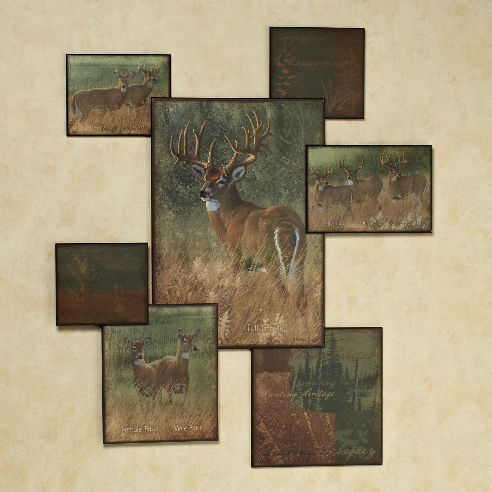 Home Natures Plan Deer Wall Art Collage Multi Warm 2000x2000