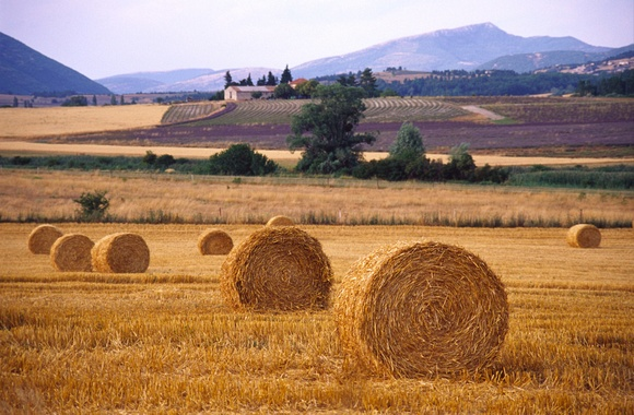 Related Pictures field hay landscape farm rustic autumn wallpaper 580x380