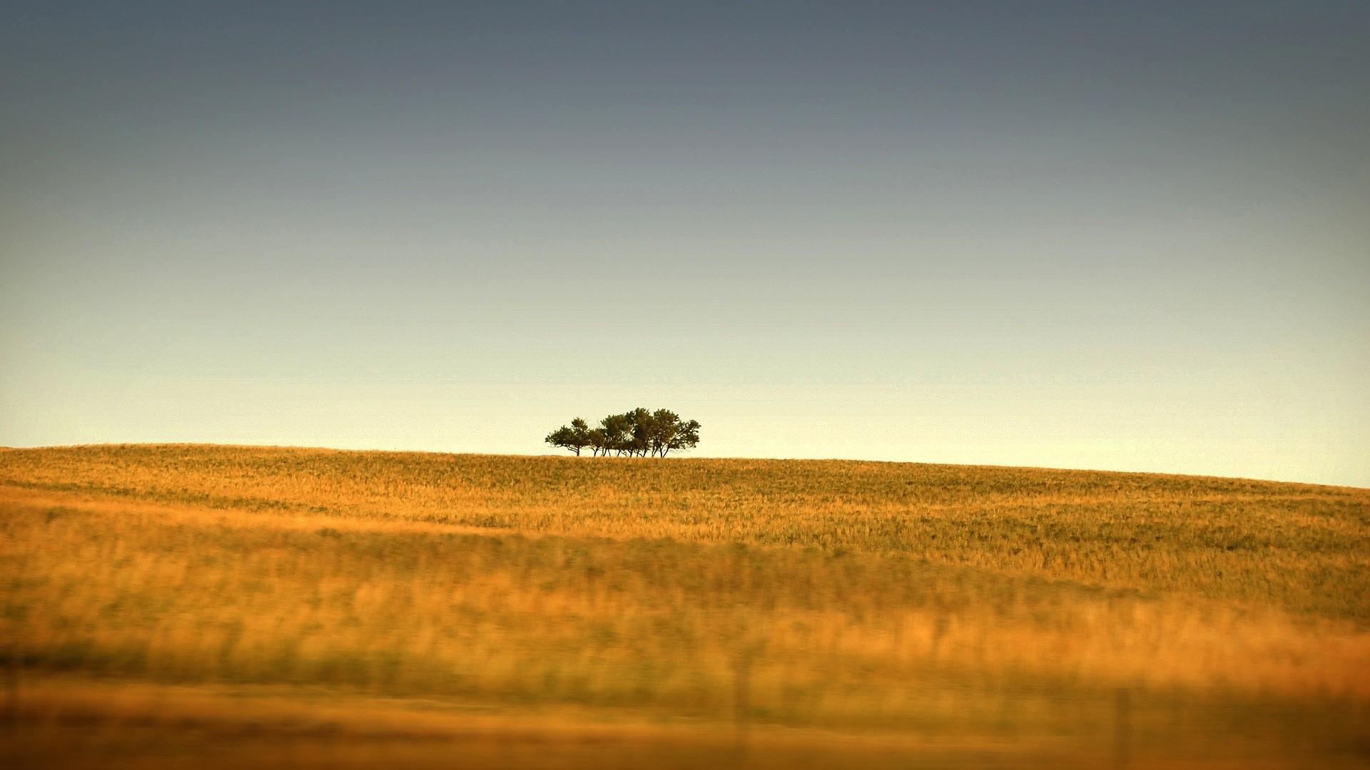 природа поле горизонт  № 3896379 бесплатно