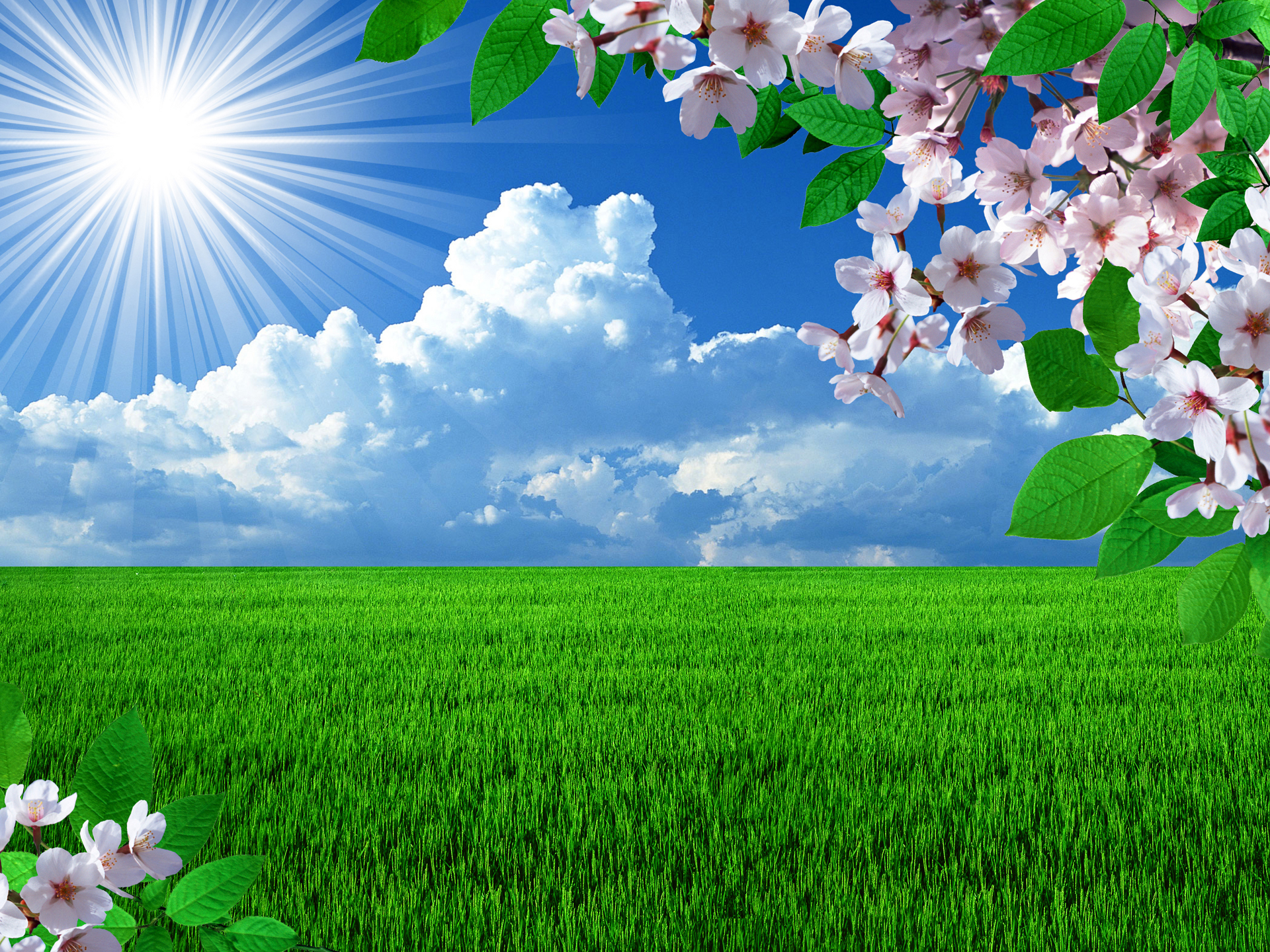 free spring desktop themes 1920x1440