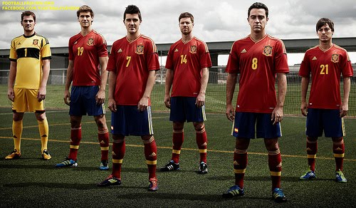 Spain National Football Team UEFA Euro 2012 Wallpapers 500x292