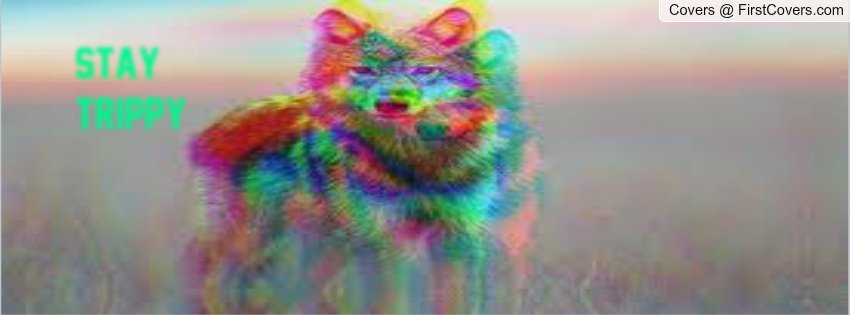 stay trippy wolf Facebook Profile Cover 1077222 850x315