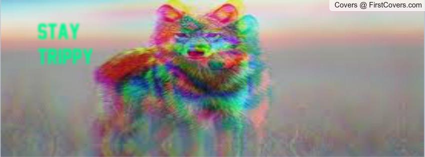 Trippy Wolf Wallpapers - WallpaperSafari