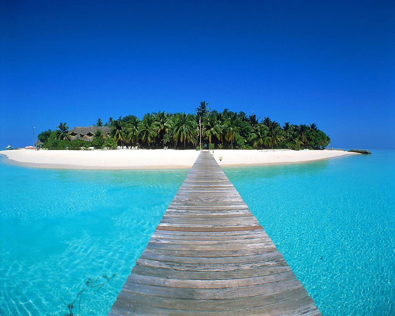 Tropical Island Wallpaper 10610 Hd Wallpapers in Beach   Imagesci 1280x1024