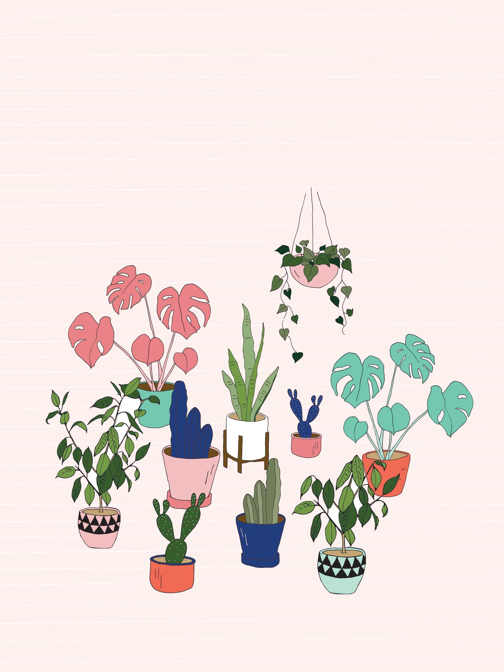 Urban jungle pot plant desktop wallpaper Make and Tell 1909x2545