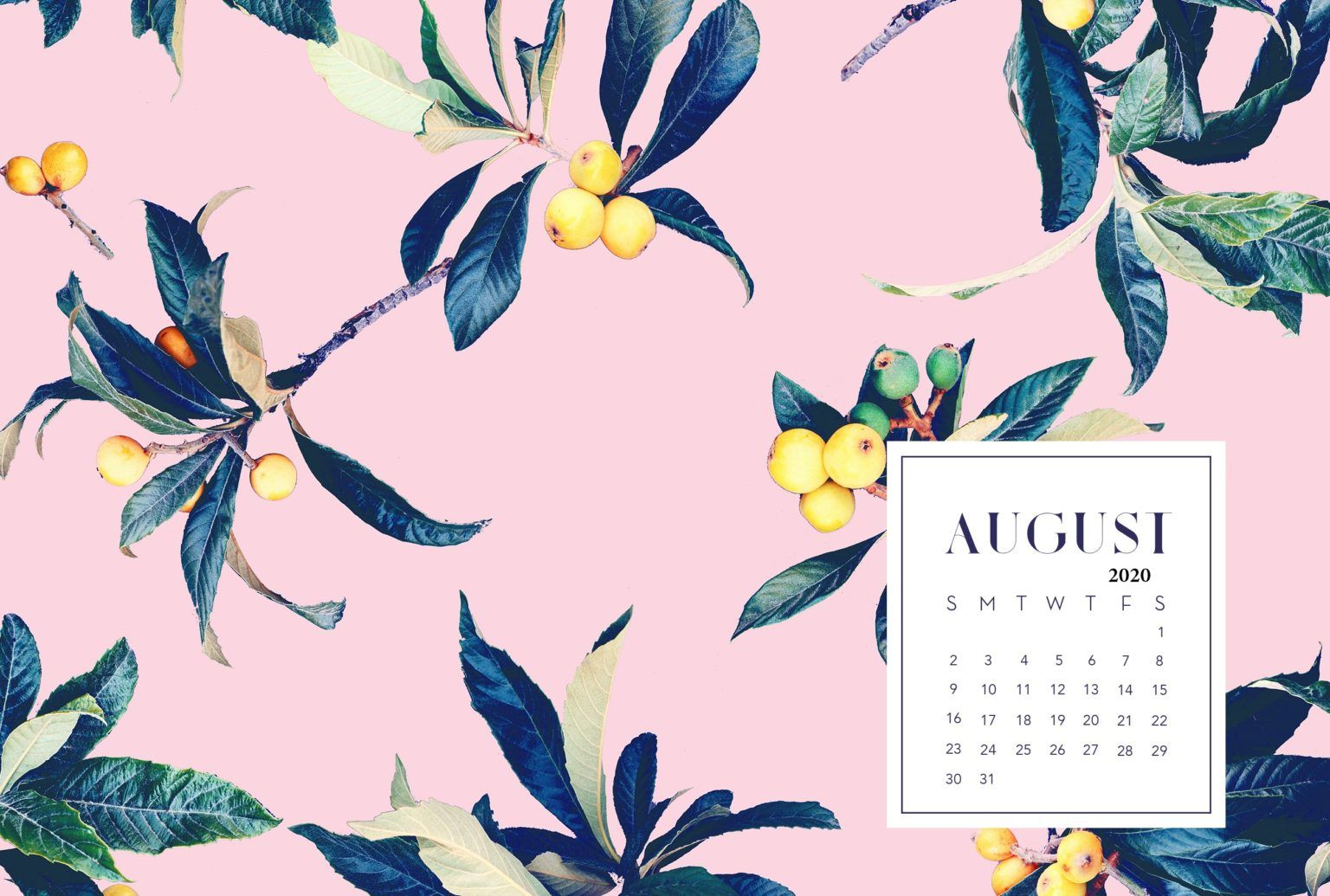 Floral August 2020 Calendar Wallpaper Calendar wallpaper 1536x1035