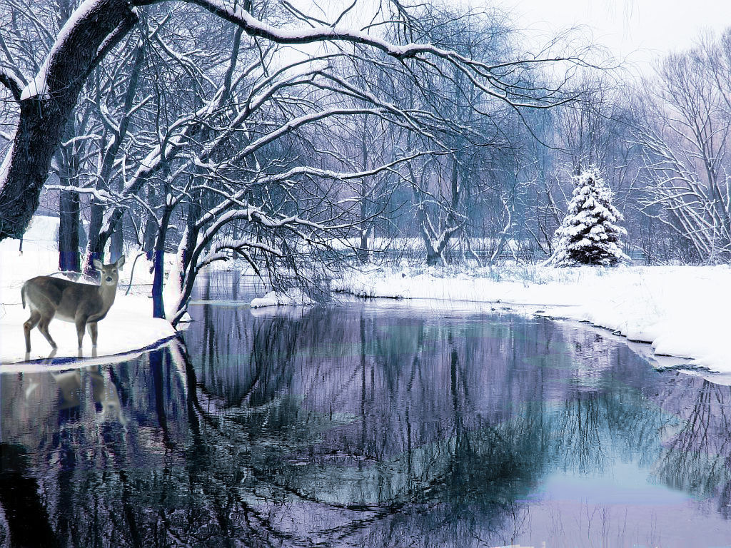 winter scene backgrounds