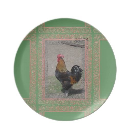 Farm Theme Rooster PlateGreen Background 512x512