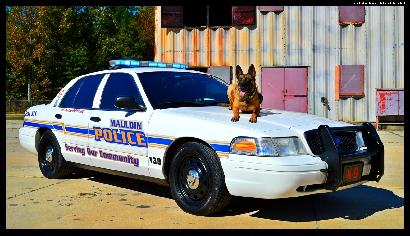 Mauldin Police Departments K 9 Officer Chica Desktop Sizes Available 1320x760
