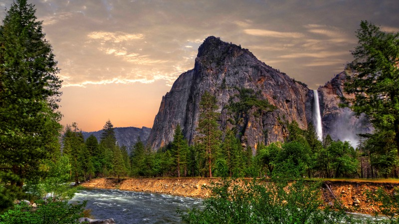 Wallpaper OS MacBook Yosemite 5k wallpapers forest OSX apple 800x450
