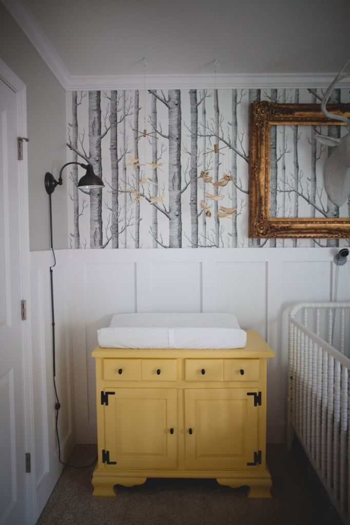 baby boy nursery birch tree wallpaper: Bathroom Trees Wallpapers, Boys ...