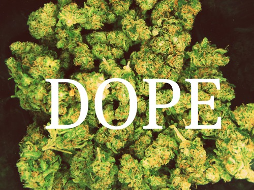 weed quote on Tumblr  Smoke Weed Tumblr Themes