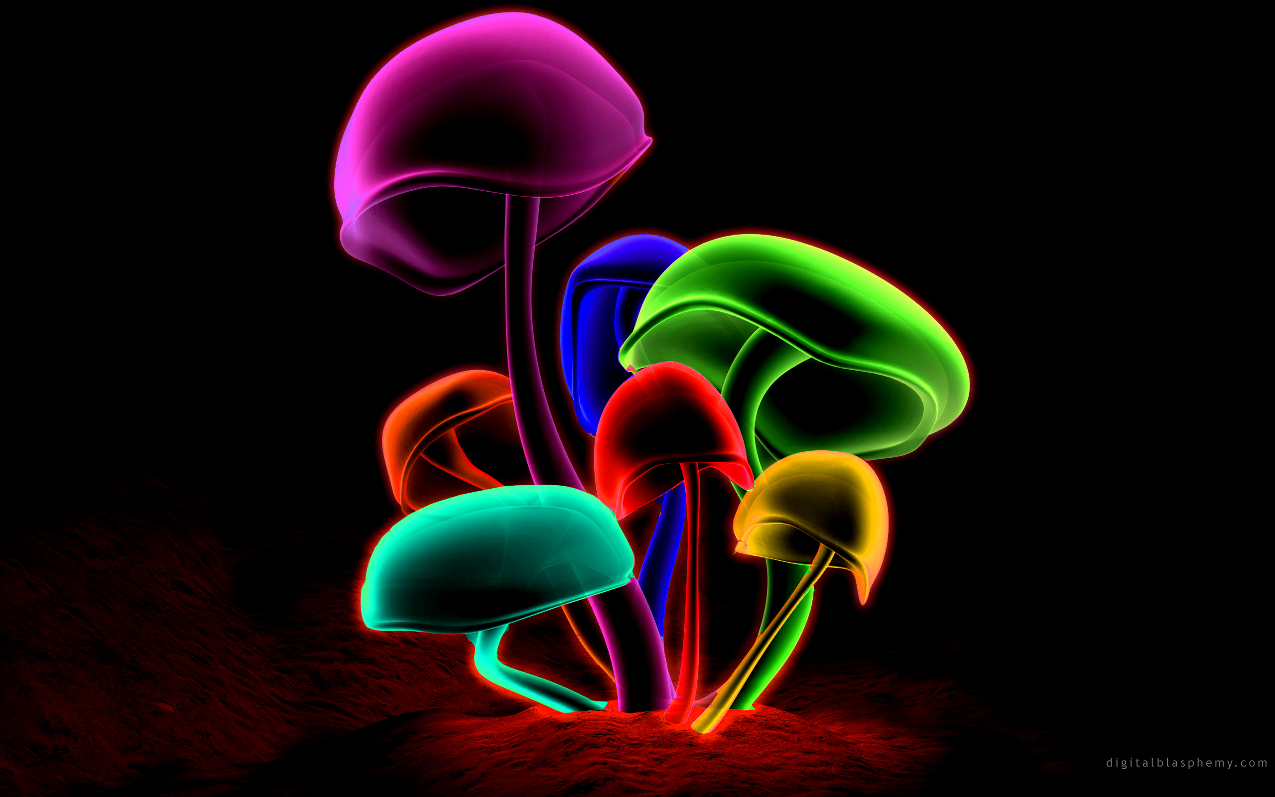 httpwwwthewallpapersorgwallpapers171743Colorful Mushroomsjpg 2560x1600