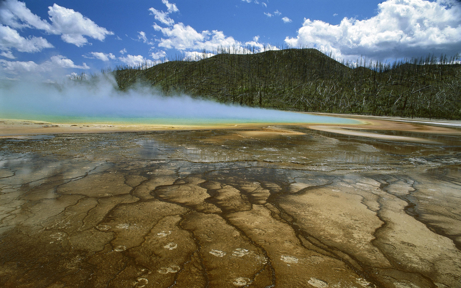 yellowstone national park hd - photo #23
