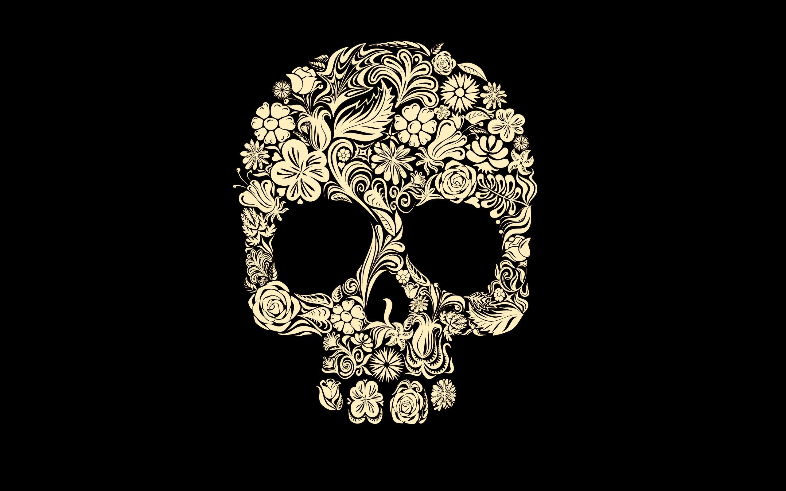 Dark Skull Wallpaper 2560x1600 Dark Skull 2560x1600