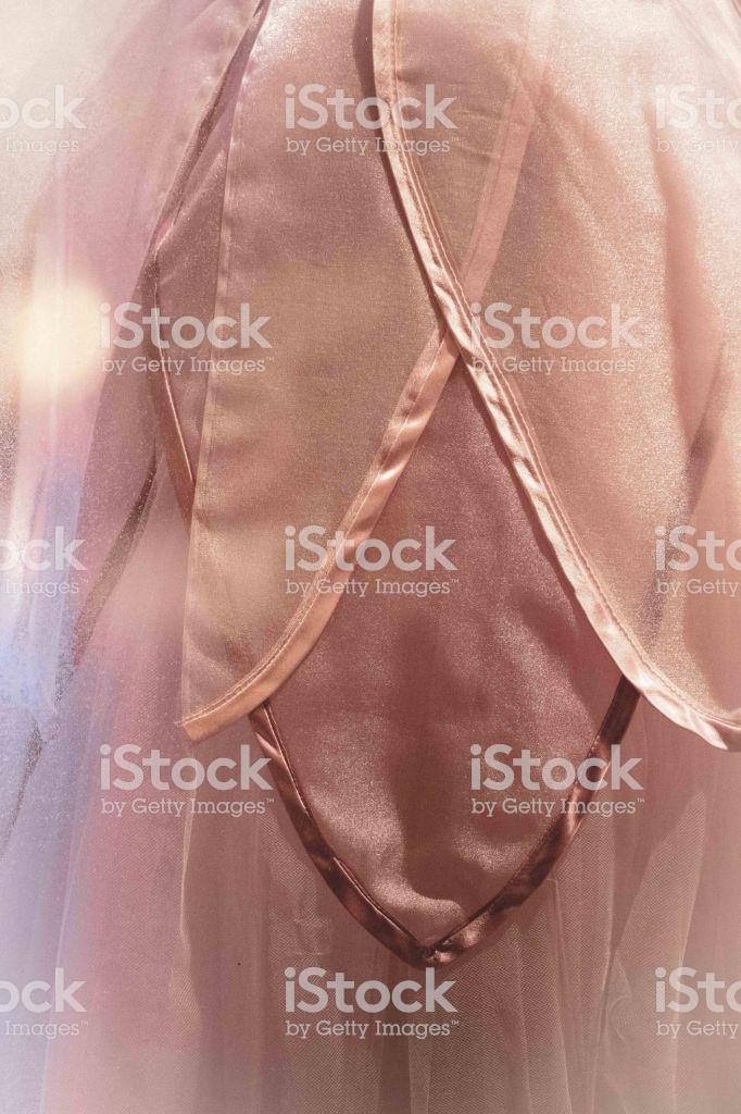 Ballet Flower Petal Toile Dress Full Frame Overlay Background 682x1024