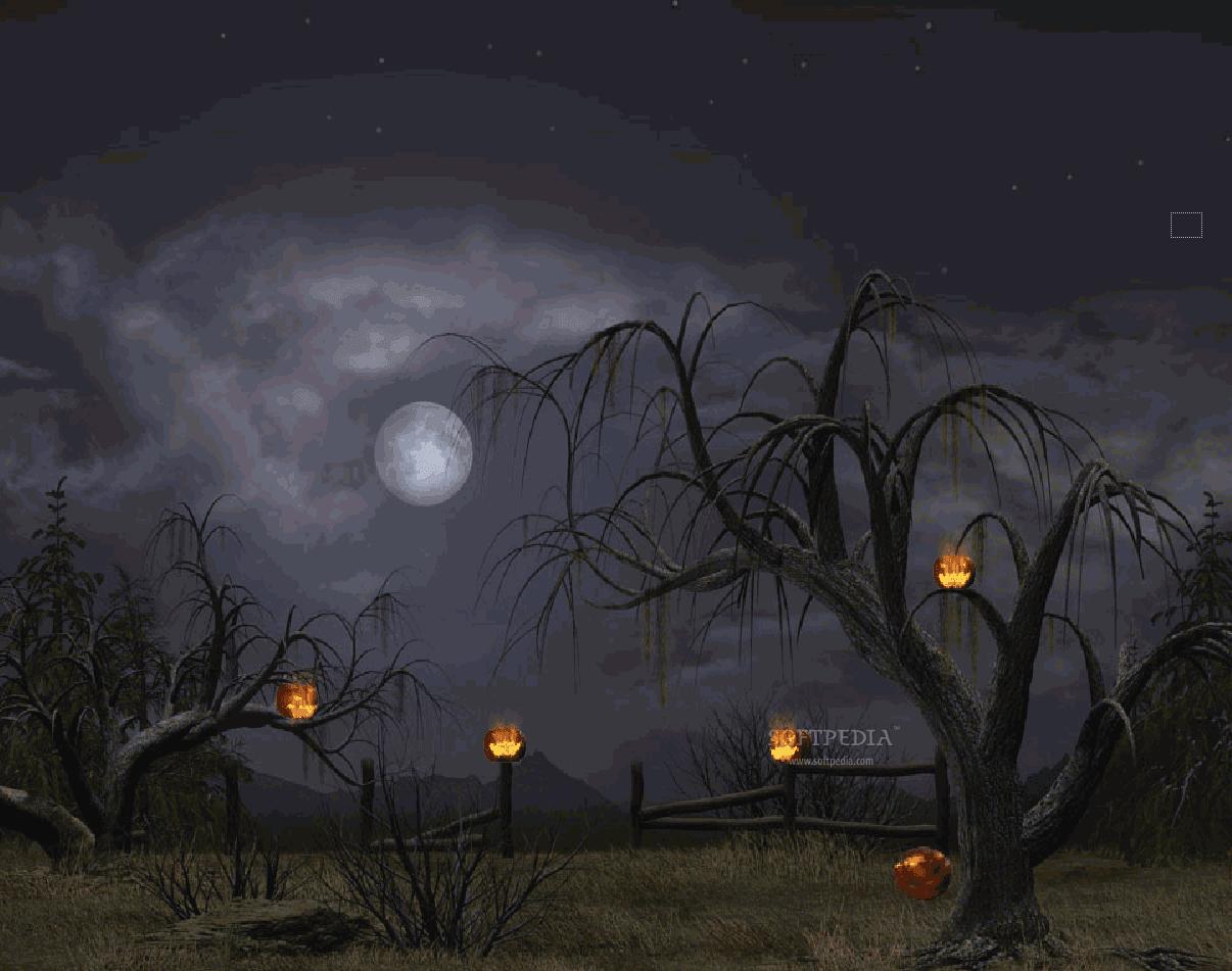 Wallpapers HD Halloween Wallpapers 1206x951