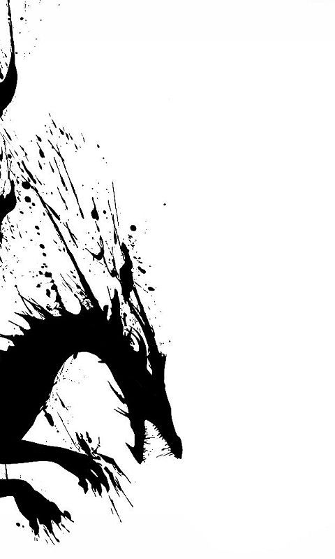 2d dragon black white black white dragon wallpaper   Download 480x800