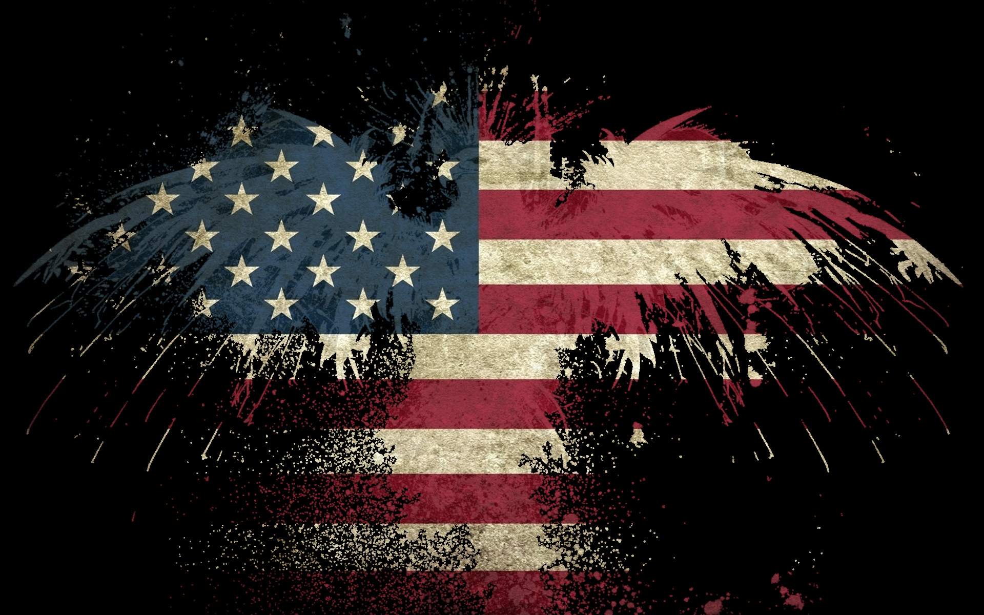 USA America flag eagle wallpaper 1920x1200 35800 WallpaperUP 1920x1200