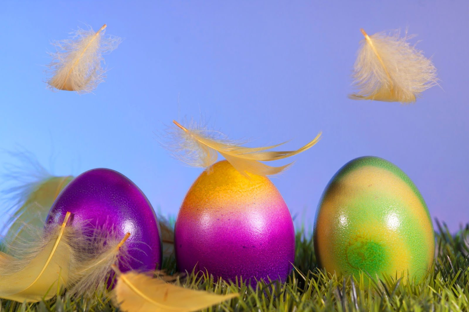 Download 20 Best Happy Easter Backgrounds 1600x1066