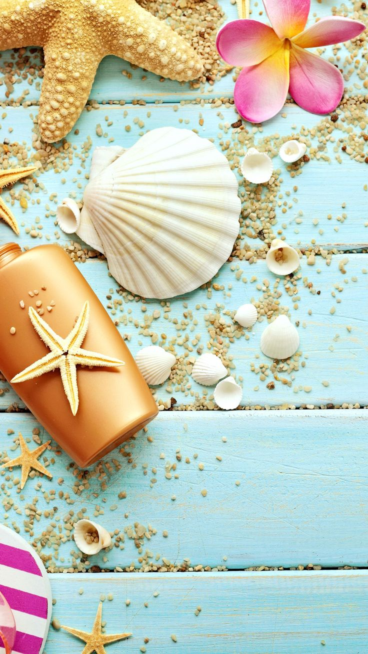 Wood Seashells Sea Star iPhone 6 Plus HD Wallpaper iPhone wallpapers 736x1308