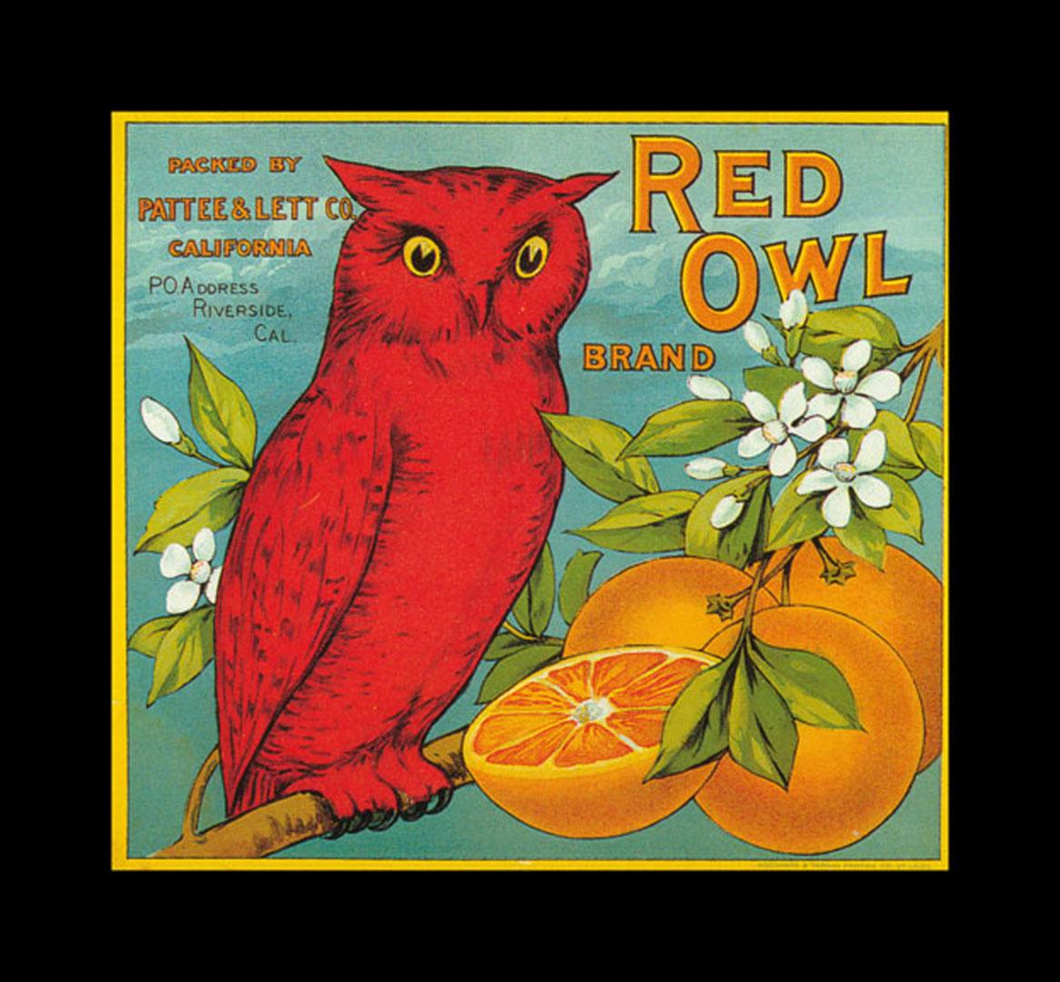 Red Owl Oranges   Vintage Fruit Crate Labels Wallpaper Image 1166x1080