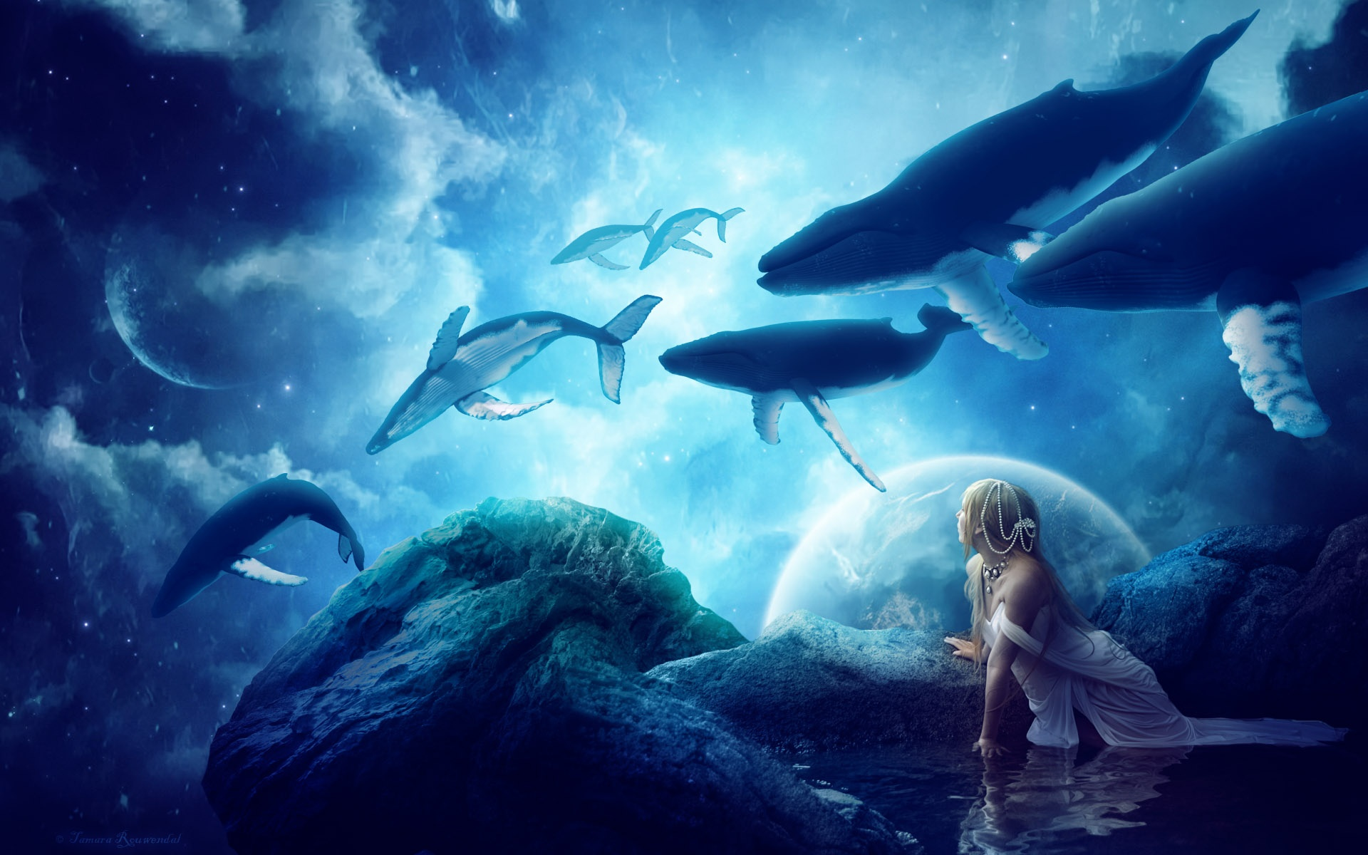 Whales Dream Wallpapers HD Wallpapers 1920x1200