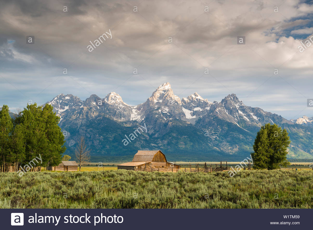 Mormon Row barn with the Tetons in the background Grand Teton 1300x957