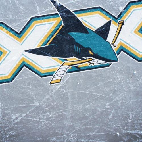 San Jose Sharks Logo Wallpaper For iPhone 4 500x500