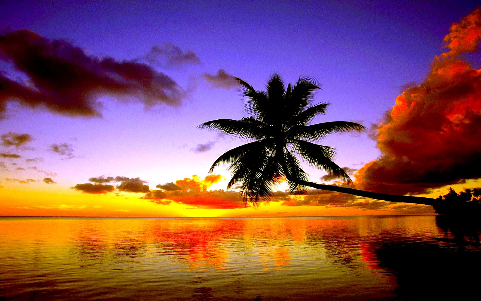Sunset Hd Wallpapers 16001000 124723 HD Wallpaper Res 1600x1000