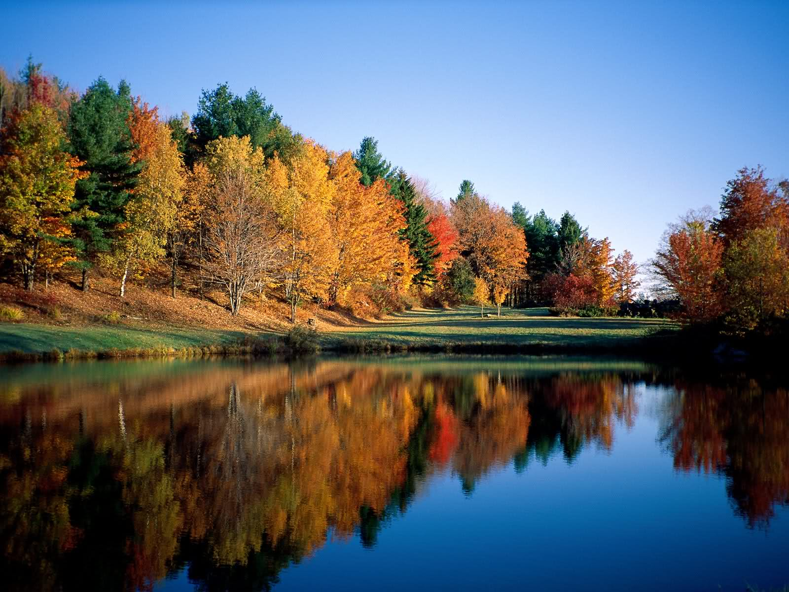 free wallpaper of natural scenery early autumnclick to download
