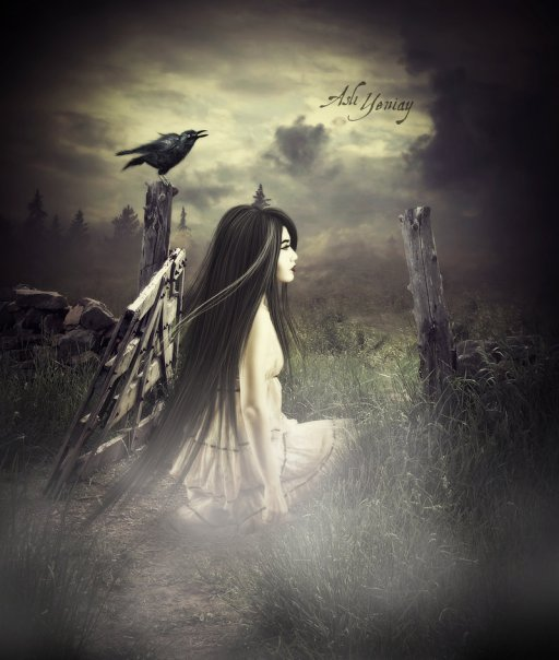 Gothic Dark Wallpapers   Download Dark Gothic Backgrounds 512x604